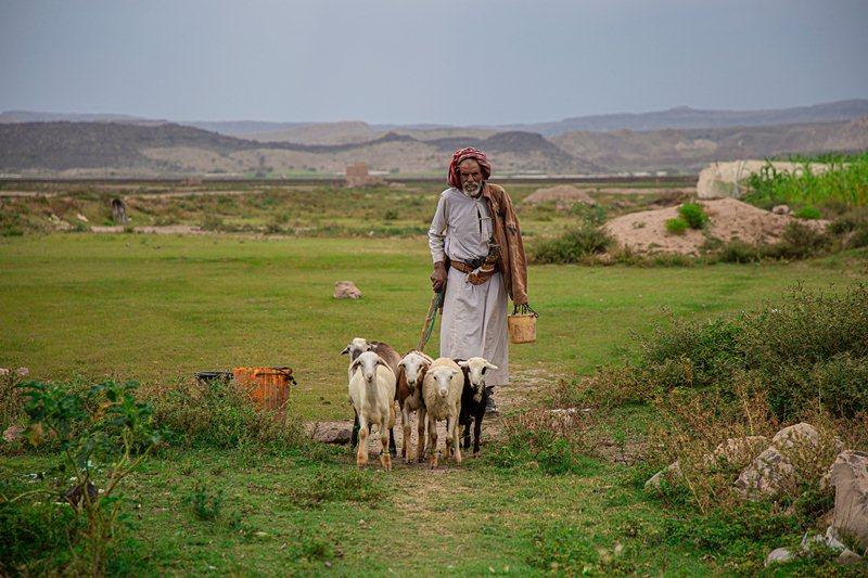 المنحة تتضمن مساندة المزارعين المتضررين